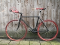 gazelle-singlespeed-20140110-001