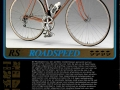 1981 Catalogus NL.indd
